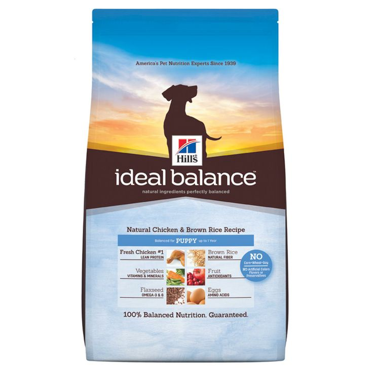 Hill S Ideal Balance Salmon And Potato Dog Food