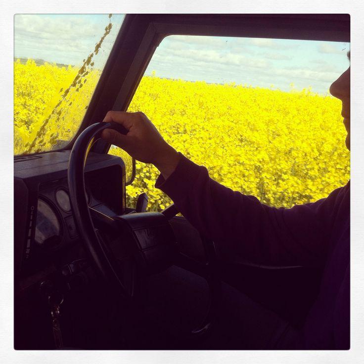 A drive in Kinsale!