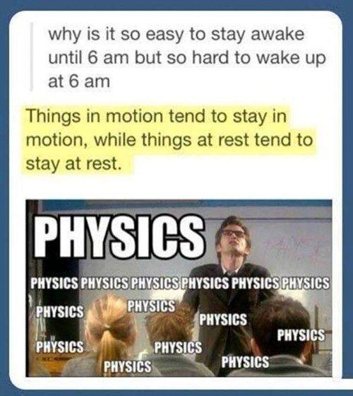 physics for the life sciences 2e pdf