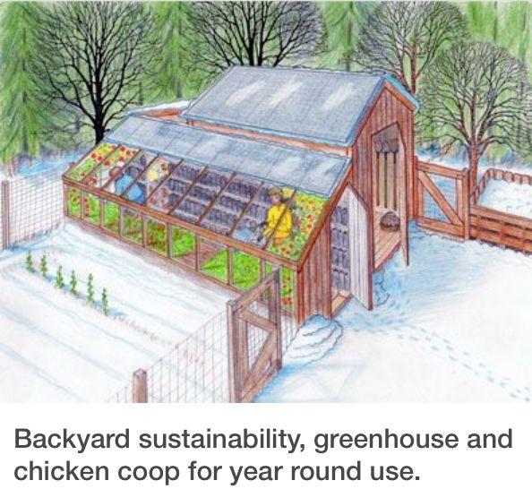 Greenhouse-Chicken Coop