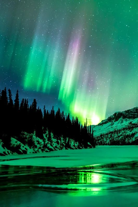 Minty green | green | greenish teal | green & purple Aurora borealis, northern lights | Nature photography