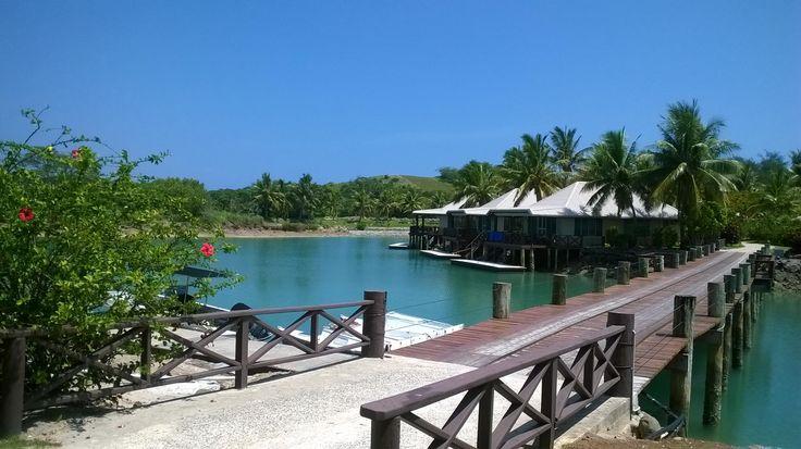 Book Musket Cove Island Resort, Fiji on TripAdvisor: See 577 traveler reviews, 781 candid photos, and great deals for Musket Cove Island Resort, ranked #2 of 3 hotels in Fiji and rated 4.5 of 5 at TripAdvisor.