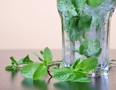 How to Use Mint Plants