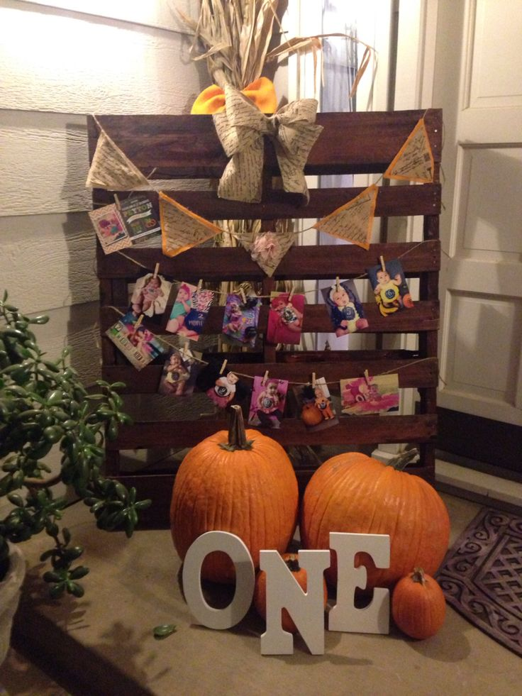 First birthday little pumpkin theme wood pallet decor. All the babies monthly photos