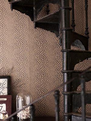 Osborne & Little panthera wallpaper