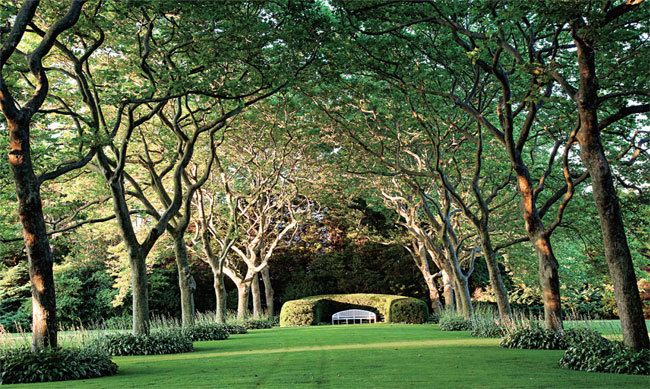 Inside Hamptons Gardens :: Hamptons Magazine: Garden Ideas, Exterior Landscapesgardenspark, Hampton Gardens, Hamptons Gardens, Beautiful, Orchard, Gardens Landscapes Pools, Backyard