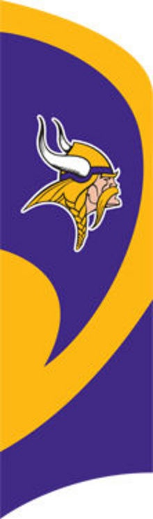 MN Vikings Tall Team Flag with pole