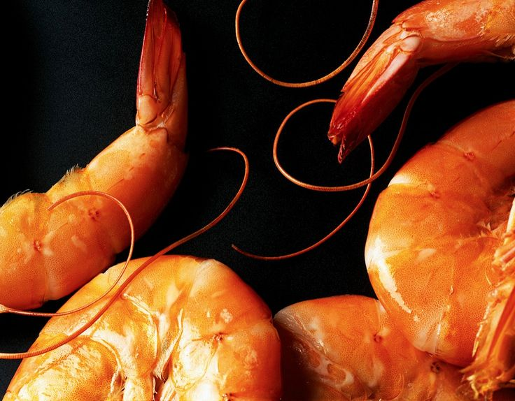 Close up abstraction of prawns. Showing how a subtle entrance of inspiration could work if zoomed in.