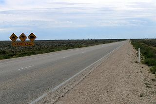 """The term """"crossing the Nullarbor"""" means driving about 1,200 kilometres on the Eyre Highway between Ceduna and Norseman in South Australia and Western Australia respectively. Between these towns the traveller crosses the 'real' Nullarbor Plain (the treeless limestone plain) as well as other regions with different characteristics."""