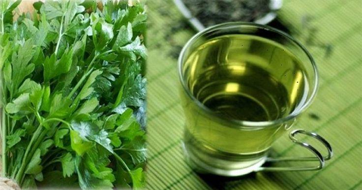 Depuis longtemps, le thé au persil a été utilisé pour modifier le cycle menstruel et normaliser le fonctionnement de l'utérus. En plus, cette boisson est le remède approprié pour toutes les maladies des reins.