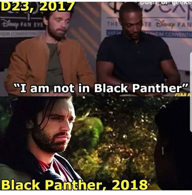 Next time if Seb says that he's not in a movie we know that actually he is in the movie. #SebastianStan #SebastianStanFan #BlackPanther #BuckyBarnes #JamesBuchanan #WinterSoldier #Marvel #Sebby #ChubbyDumpling