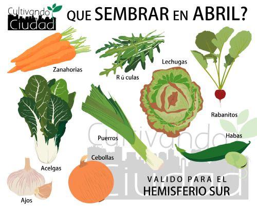 ¿QUE SEMBRAR EN ABRIL?Amigxs, como ya es costumbre el primero de cada mes compartimos con ustedes las variedades a sembrar.MANOS A LA TIERRA!!!!!