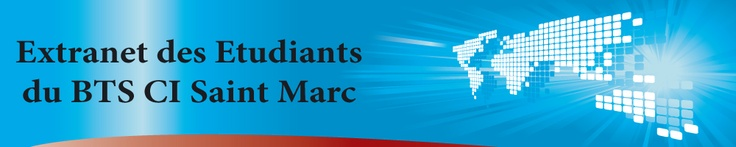 BTS Commerce International Saint Marc de Lyon