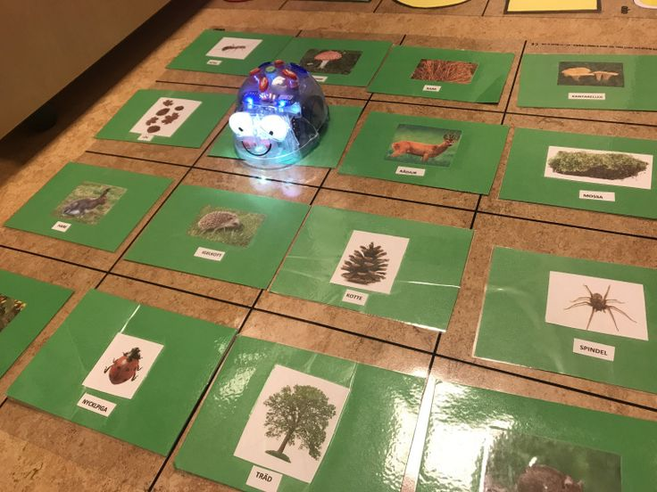 Tips på Blue-Bot mattor som man kan göra själv!Den genomskinliga rutmönstrade plastmattan hittar ni på hos.se.Barnen har bygg men bana för roboten att ta sig igenom med kaplastavar. Färg och form.M…