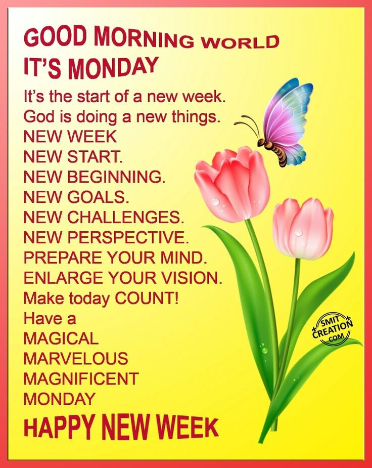 1000 ideas about monday blessings on pinterest good - Good morning monday images ...