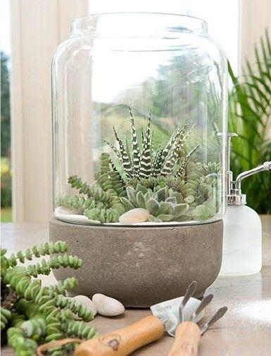 Groen wonen & DIY | Zomerse ideeën met vet planten & cactussen + DIY mini tuintje maken