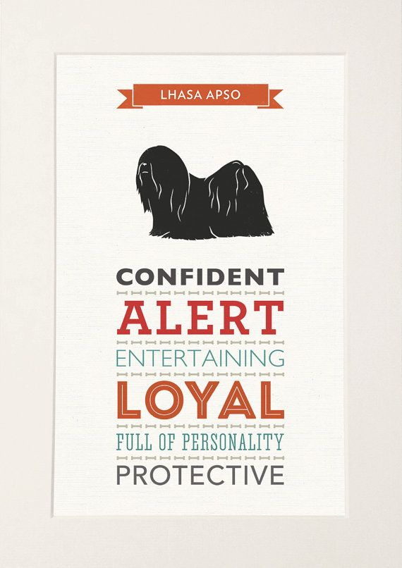 Lhasa Apso Dog Breed Traits Print by WellBredDesign on Etsy