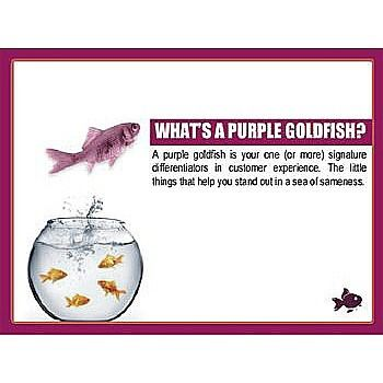 What is purple goldfish? Source: slideshare #customer #experience #behavior  #targeting #strategies #marketing #analysis #expectation #satisfaction #growth #competition #value #uniqueness #benefits #environment  #achievement #differentiation #distinction