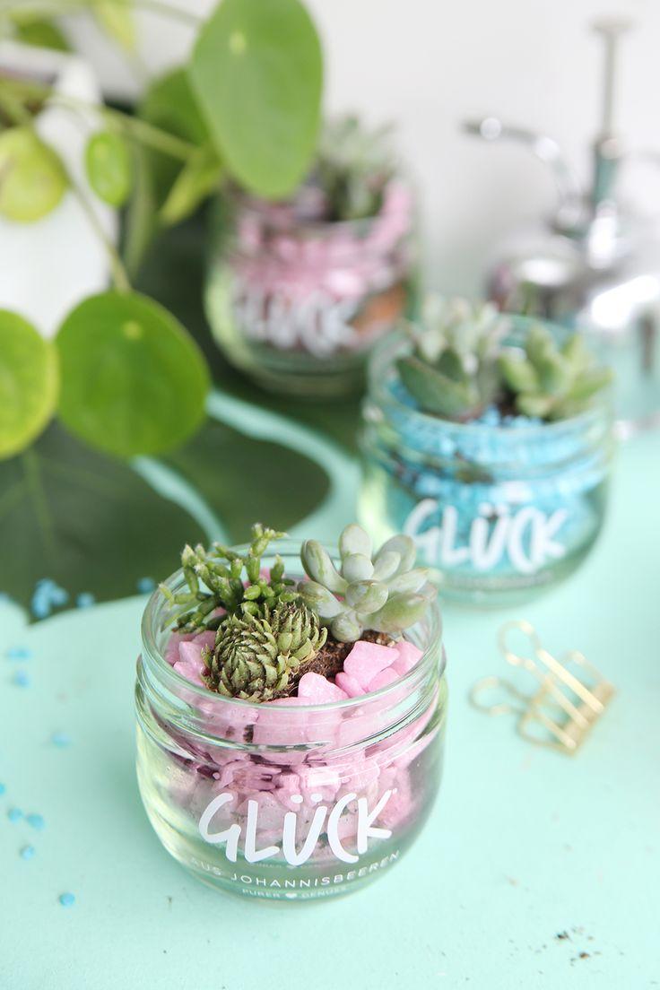 Kreative Marmeladenglas DIY Idee: Upcycling aus altem Marmeladenglas - kleiner DIY Sukkulentengarten im Glas   Step by Step DIY Tutorial