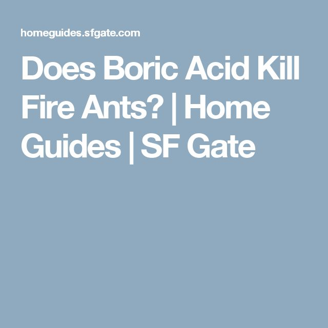 Does Boric Acid Kill Fire Ants? | Home Guides | SF Gate