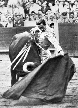 Manuel Rodríguez Sánchez, Manolete (1917-1947). Famous son of Cordoba, killed in the Linares ring by the fifth bull of the afternoon, the Muira bred Isolero