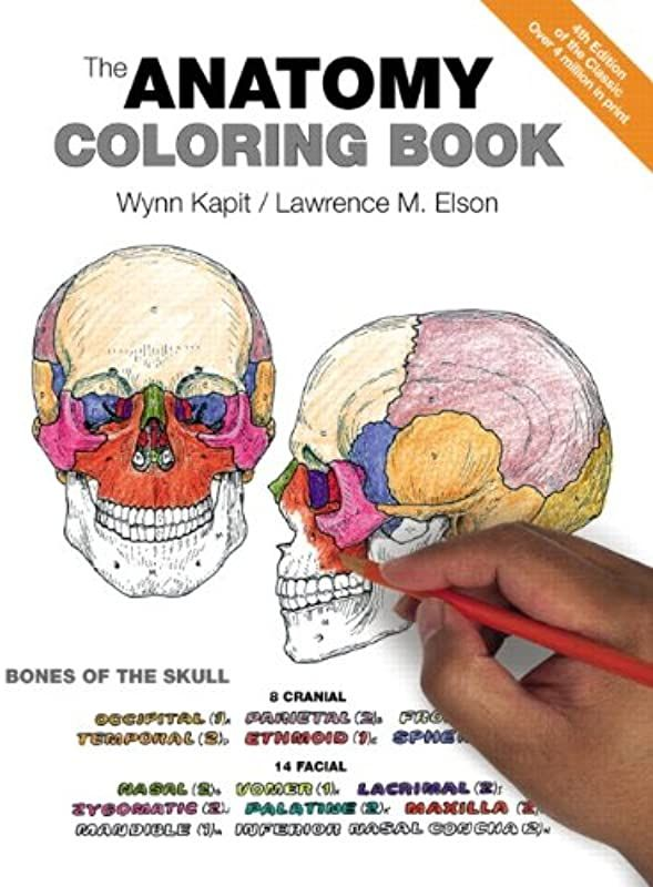 EPUB] The Anatomy Coloring Book, By: The Anatomy Coloring Book Anatomy  Coloring Book, Coloring Books, Coloring Book Download