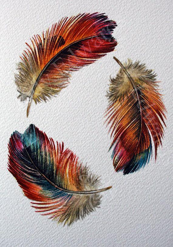Tres plumas estudio acuarela de plumas del arco iris por jodyvanB
