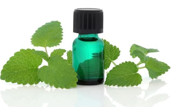 Health benefits of melissa essential oil can be attributed to its properties as an antidepressant, cordial, nervine, emmenagogue, sedative, antispasmodic, stomachic, antibacterial, carminative, diaphoretic, febrifuge, hypotensive, sudorific and tonic substance.
