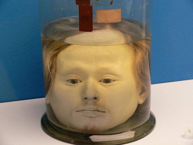 Diogo Alves's Preserved Head   Flickr - Photo Sharing!