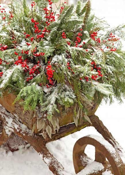 Wheelbarrow Container ~  This vintage wheelbarrow, which holds annual flowers during the summer, gets a wintry update with branches of noble fir, Port Orford cedar, dried eucalyptus and winterberry holly.  14 Cheerful Winter Container Gardens | Midwest Living