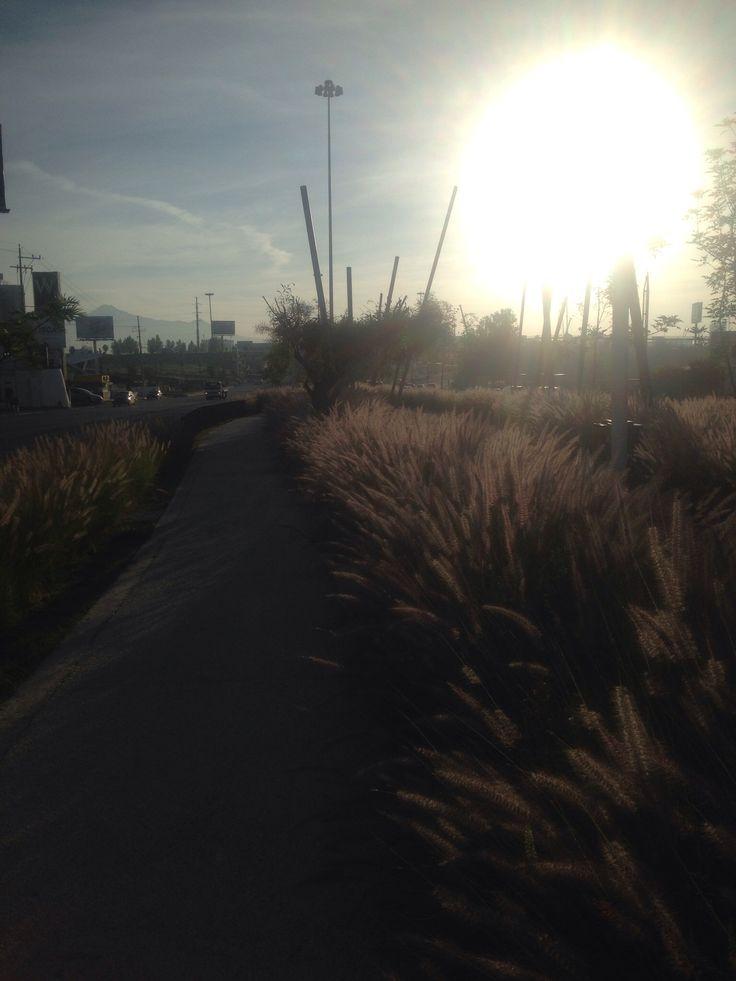Cycle path, Puebla