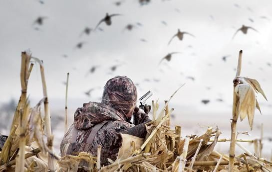 24 Best Duck Hunting Images On Pinterest Duck Blind