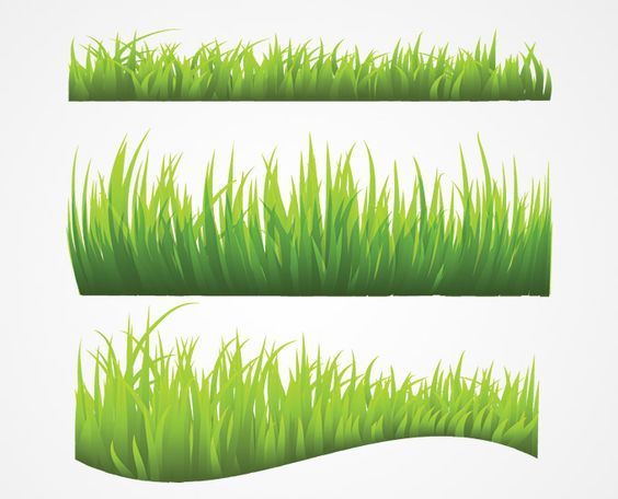 Grass Vector (Free) | Free Vector Archive: