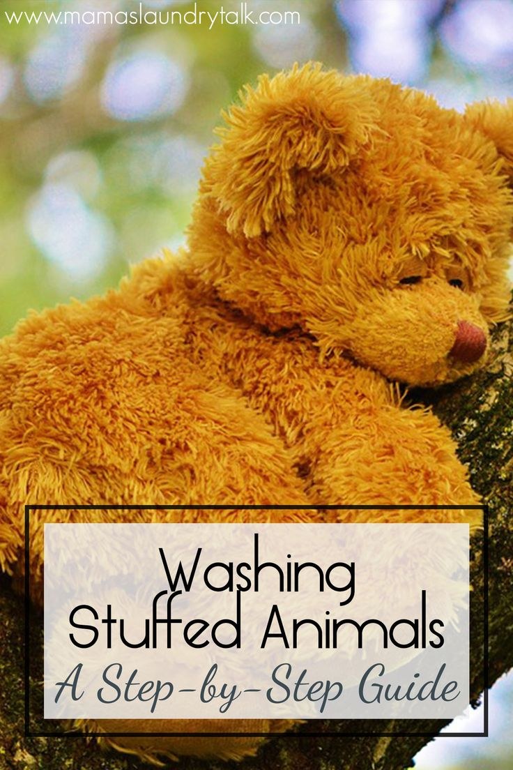 A step-by-step guide to washing stuffed animals that are too delicate to wash in a machine.