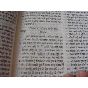 Punjabi Holy Bible    $45.99