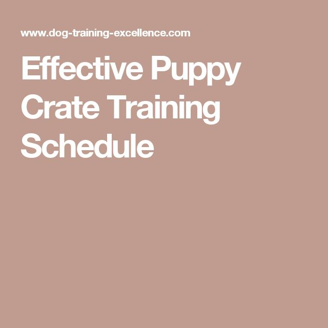 how to start crate training a puppy