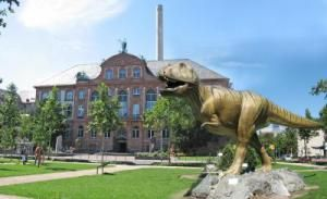 10 Things to See in Frankfurt (Besides the Airport): The Senckenberg Museum of Natural History