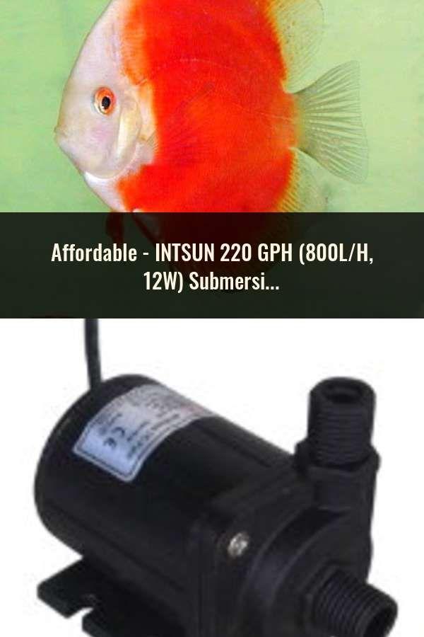 INTSUN 220 GPH (800L/H, 12W) Submersible Water Pump for Fish Tank