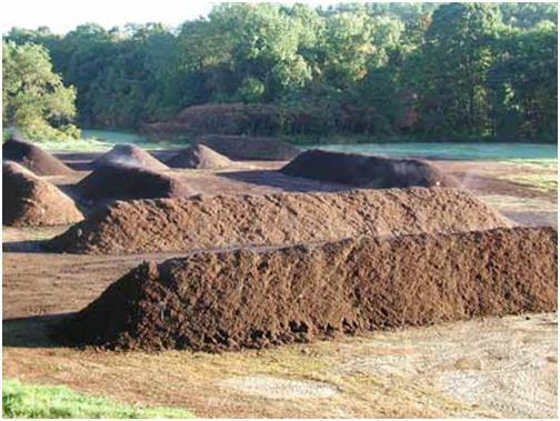 Kırmızı Kaliforniya solucanlarının dışkısından elde edilmiş olan solucan gübresi yığınları - http://www.solucangubresi.org