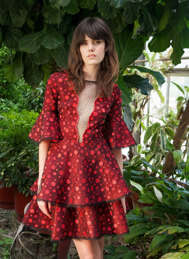 Resort 1777  Lantern-Sleeve Dot Embroidered Lace Flared Mini Dress, Red
