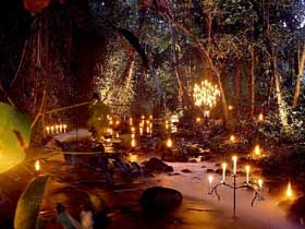 Flames of the forest dining experience, Port Douglas Australia