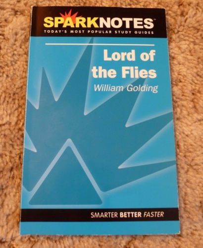 U.S. Government And Politics Study Guides - SparkNotes
