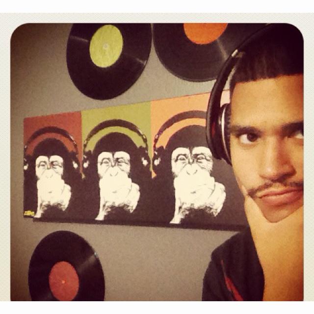 Monkeys love music