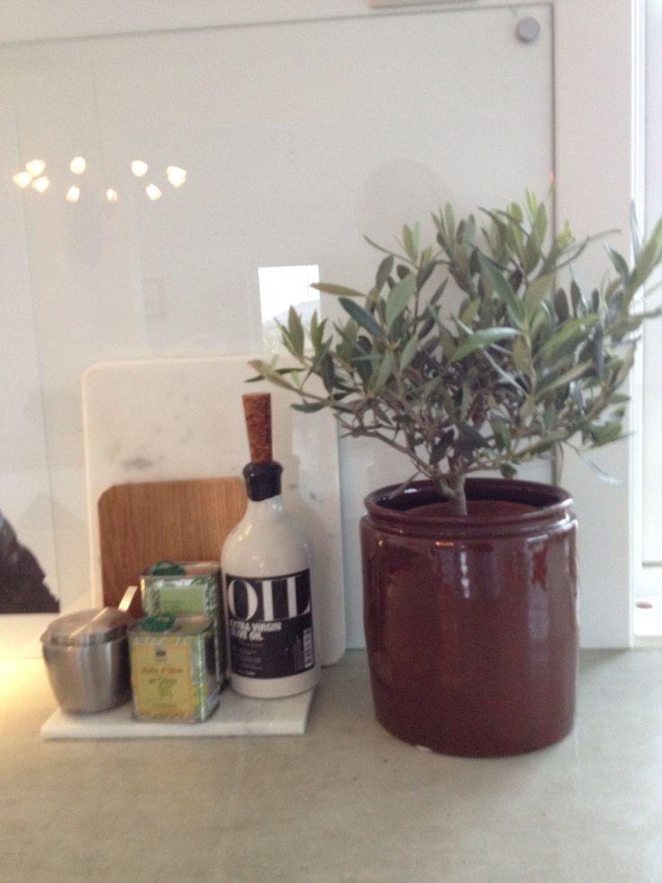 Kjøkken Oliventre Marmor Olje