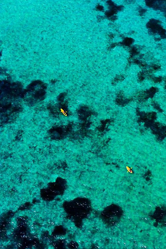Sea kayaking, Florida Keys - this is amazing and fun and oh the sharks and things you'll see!