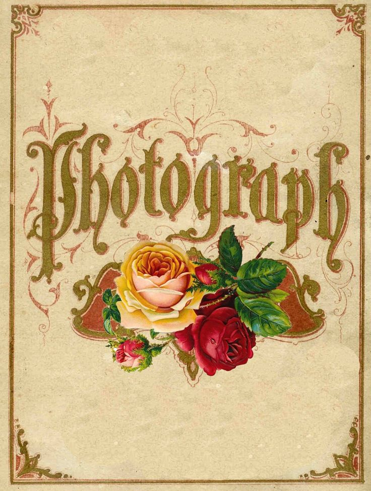 Vintage Floral Cover from a Victorian Photo Album Cover.
