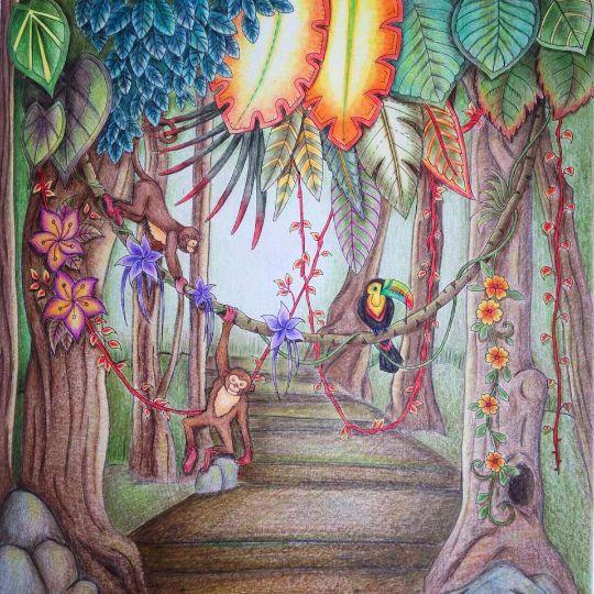10 Best MJ Wild Jungle IV Sloth Toucan Pg 33 34 Images On Pinterest