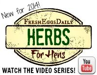 Herbs for Hens Video Series from Fresh Eggs Daily