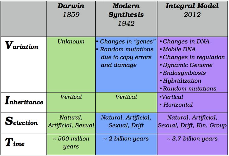 Modern synthesis (20th century)
