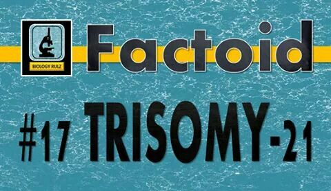 Did you know:  Trisomy-21 is a #GeneticDisorder caused by the presence of a third copy of #chromosome21. Known as #DownSyndrome, #Trisomy21 is associated with physical growth delays, characteristic facial features, and mild to moderate intellectual #disability. [The average #IQ of a young adult with #Down syndrome is 50 (equivalent to the mental ability of an 8-year-old child).] The parents of affected children are genetically normal as the extra #chromosome occurs by chance. Trisomy-21 is…